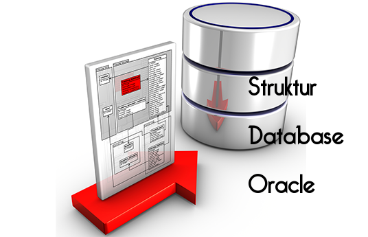 Struktur Database Oracle