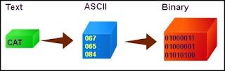 ascii encoding