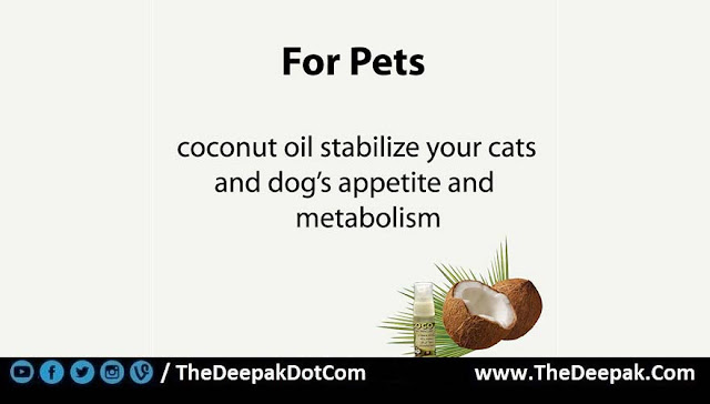 7 COCONUT OIL used for Pets