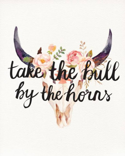 """Take The Bull By The Horns"" 