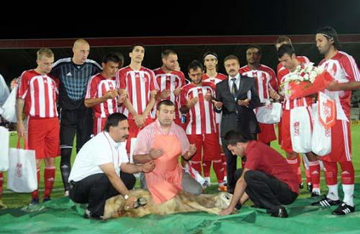 Sivasspor players pose with a restrained lamb before their friendly with FK Rad