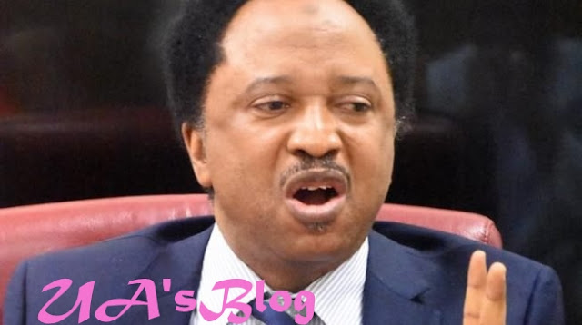 2018 Budget: Shehu Sani Blasts Buhari, Says 'Signature' Grudgingly Or Happily Is A Crown Of Consent