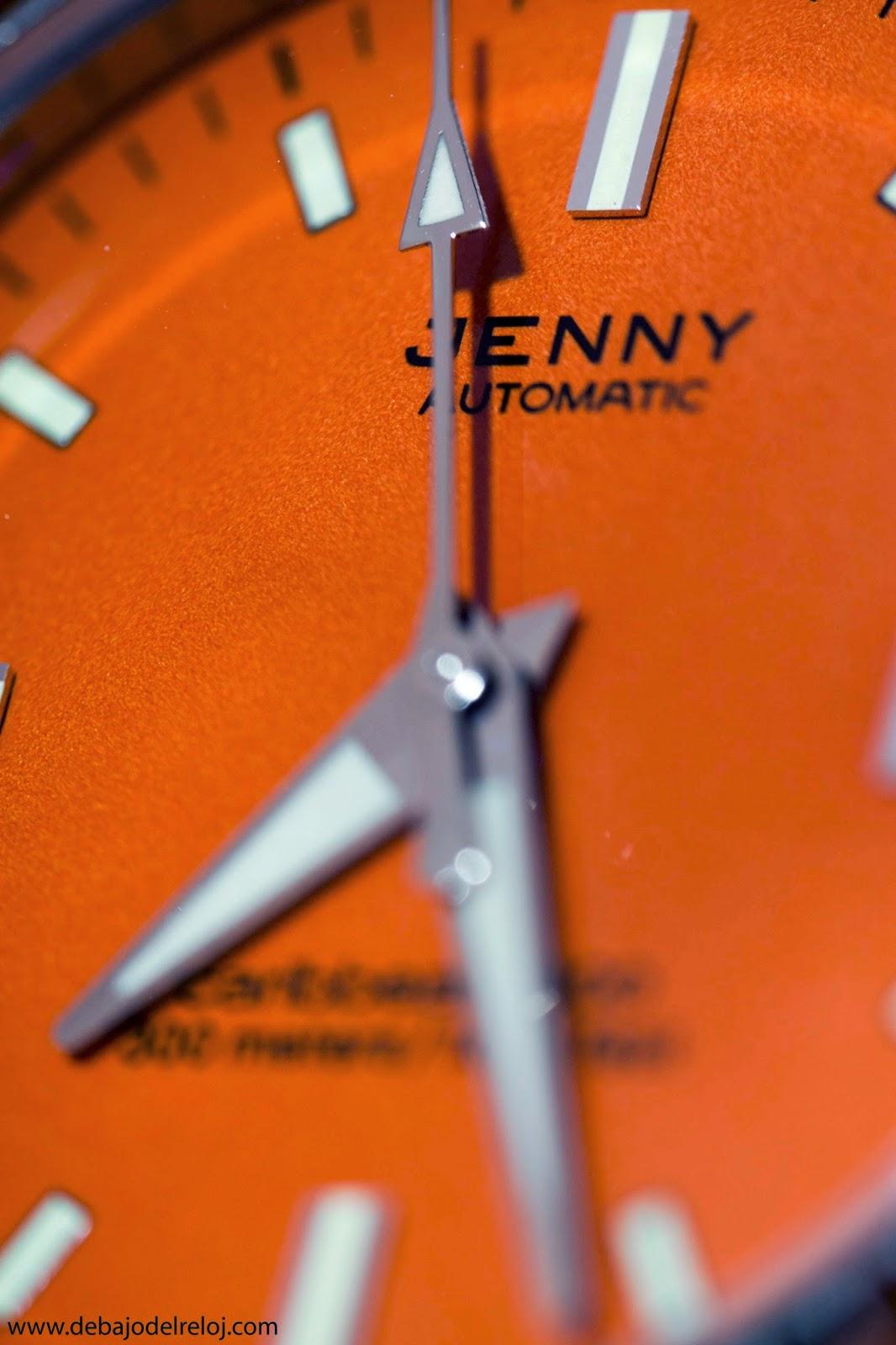 Mi Jenny Caribbean 300 5