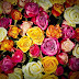 Kitab Fiqh Al Mar'atul Muslimah (Pertemuan 65): NIFAS DAN HUKUM-HUKUMNYA