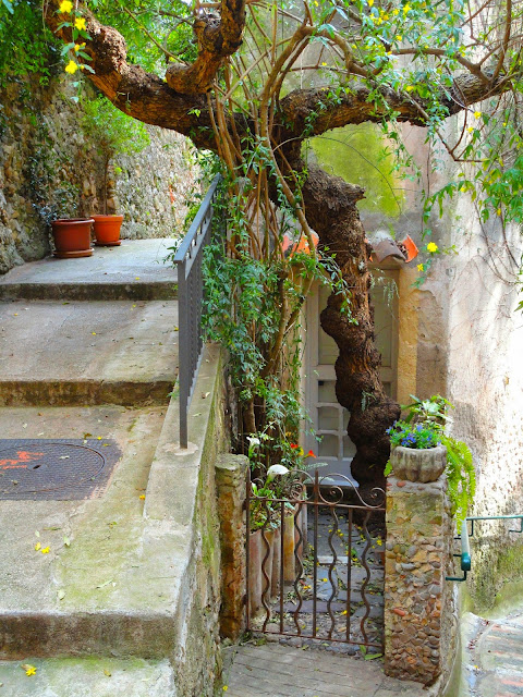 Roquebrune cap martin, village, château, ruelles
