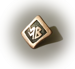 \Bronze Badge