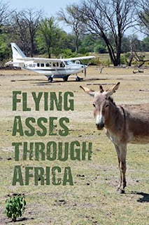 Flying Asses Through Africa - a politically incorrect look at Charter flying on the Dark Continent by Jack Mitchell bookbub
