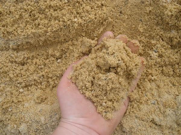 Mẫu cát vàng
