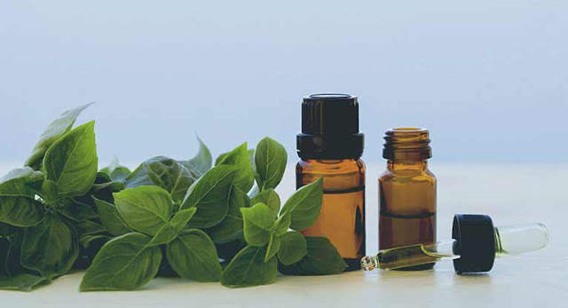 essential-oils-kill-bacterial-infection