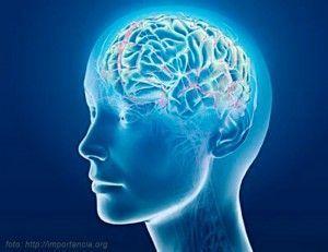 Diccionario de Bioneuroemoción