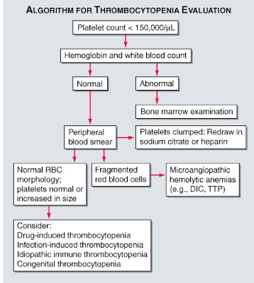 MEDICAL PG QUESTION BANK: Thrombocytopenia-Evaluation