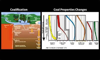 pembentukan batubara hubungannya dengan cbm
