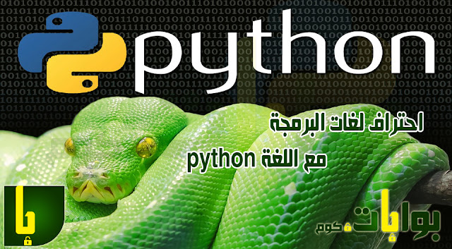 professional-programming-languages-know-what-language-python