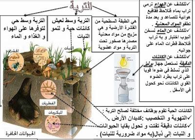 دروس و ملخصات السادس : ملخص درس التربة وسط حي و مكوناتها النشاط العلمي