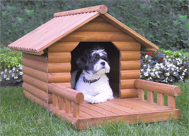 A Large Doghouse for Your Big Furry Friend