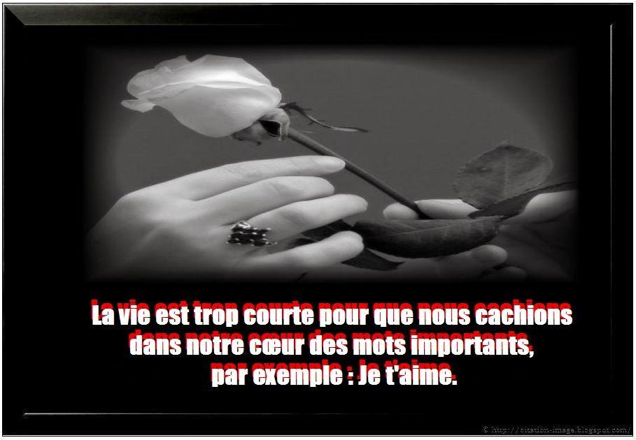 ... citation d'amour paulo coelho ~ Citation en image : photo citation