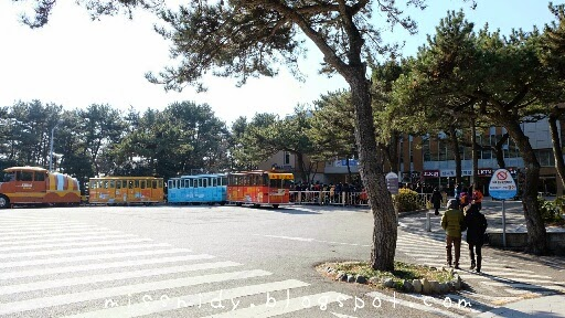 danubi train in taejongdae park busan