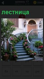 Извилистая лестница с перилами ведущая в дом, вдоль которой расположены цветы в горшках