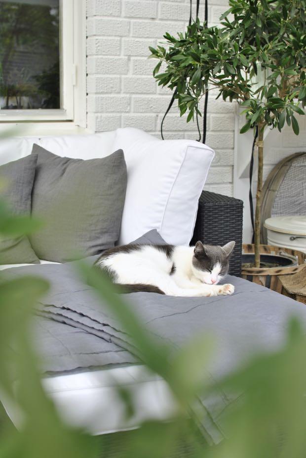 hannashantverk.blogspot.se katt loungemöbler olivträd linnekuddar