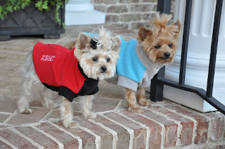 https://www.kooldawgtees.com/fido-highline-fleece-dog-coat.html