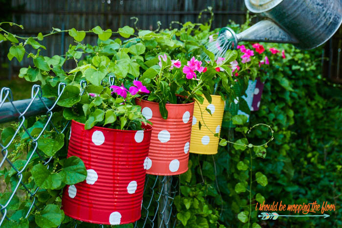 Backyard Fence Decor Ideas