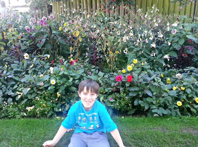 Boy sitting in front of flower bed, Bristol Zoo