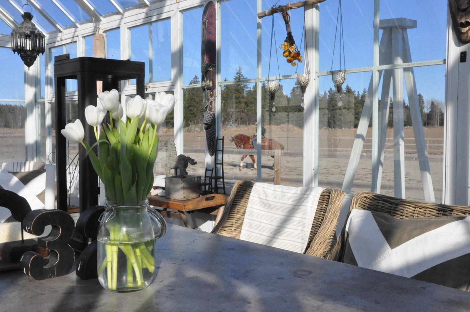 Den vita drömgården: mars 2016
