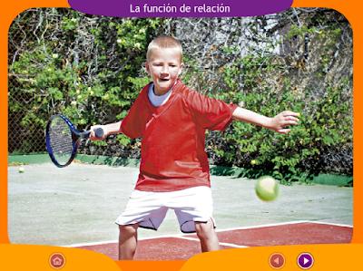 http://ceiploreto.es/sugerencias/juegos_educativos_6/2/3_Funcion_relacion/index.html