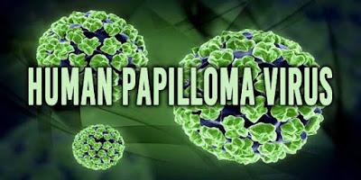 Apakah Virus Hpv Kutil Kelamin Bisa Hilang Atau Mati