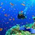ΕΤΟΙΜΑΖΟΝΤΑΙ ΤΑ ΠΡΩΤΑ ΚΑΤΑΔΥΤΙΚΑ ΠΑΡΚΑ ΣΤΗΝ ΚΡΗΤΗ   -   Upcoming the first Diving Parks in Crete