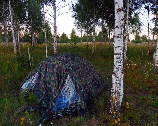 Nocleg w brzozowym zagajniku przed granicą rosyjsko-ukraińską.