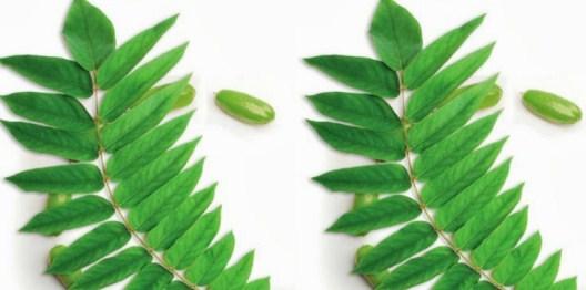 21 Manfaat Belimbing Wuluh untuk Kesehatan, Kecantikan dan Diet