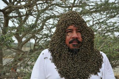 """""""نحال"""" سعودي يجمع أكثر من 20 ألف نحلة حول وجهه.... وفي الاخير وقعت الكارثة التي لم يتوقعها المصور لن تصدق مذا وقع"""