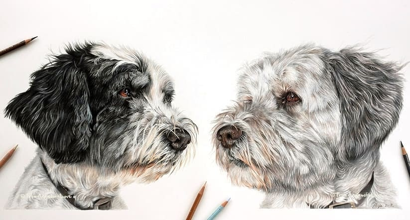 10-Miah-and-Bezi-Angie-Cats-Dogs-and-an-Owl-Pencil-Drawings-www-designstack-co