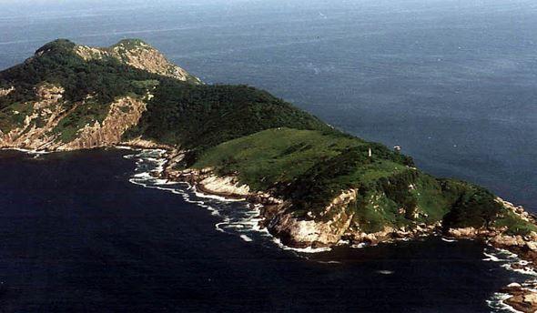 ايلا دي كيمادا غراندي,البرازيل,جزيرة,جزيرة الثعابين,الأفاعي,الأفعى الذهبية
