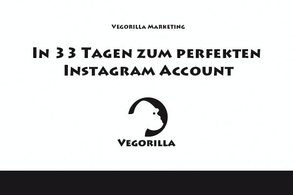 In 33 Tagen zum perfekten Instagram Account