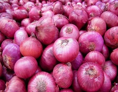 Onion Cutting Technique