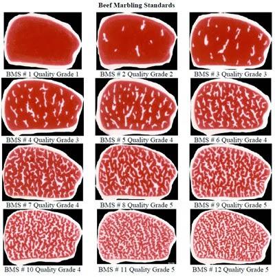 Jadi Daging Termahal di Dunia, Apa Istimewanya Daging Sapi Wagyu?