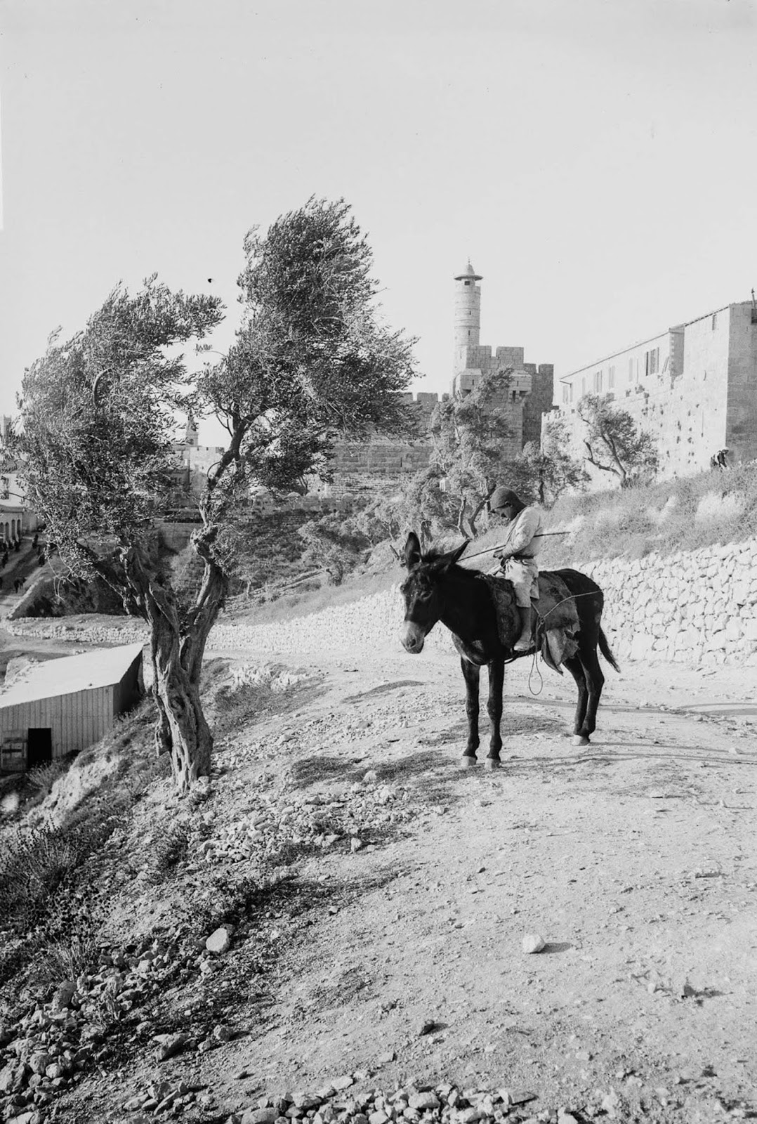 A local kid. Jerusalem, c. 1900.