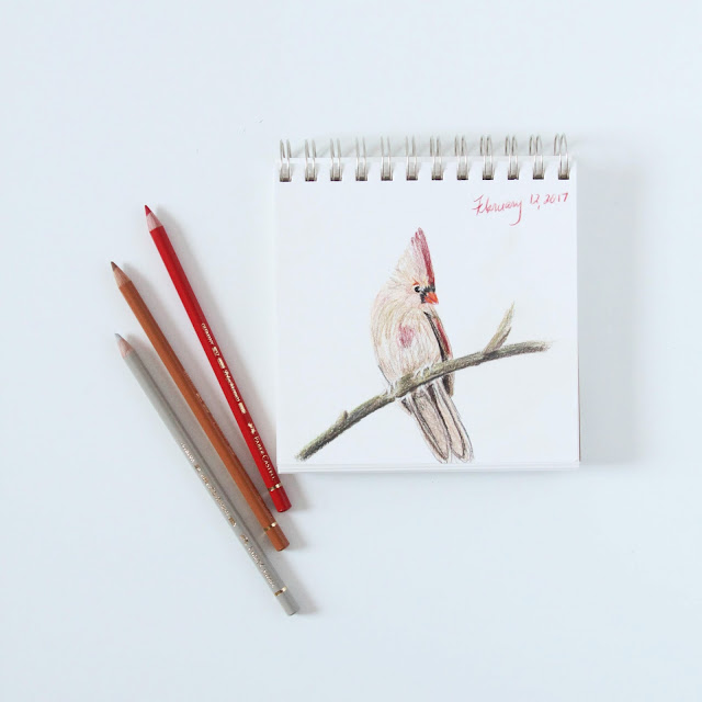 colored pencils, sketchbook, cardinal, Anne Butera, My Giant Strawberry