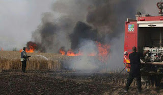 Fire started by Gaza eco-terror