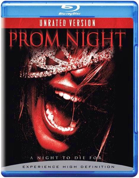 Prom Night (2008) [Dual Audio] [Hindi Eng] BRRip 480p 300MB Poster