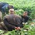 Criminosos de alta periculosidade são recapturados em Seberi