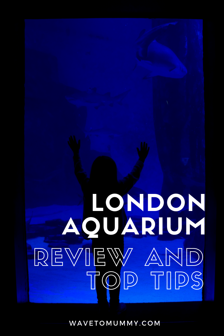 Review of the SEALife London Aquarium and the Behind the Scenes Tour, and top tips for visiting. There are sharks, sting rays, jellyfish, penguins, and all kinds of bugs and fish. We think it's great place to take the kids in London!