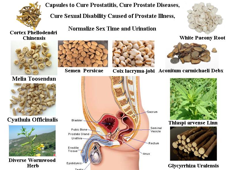 Kanefron Prostate Vélemények Prostatitis trutne tej