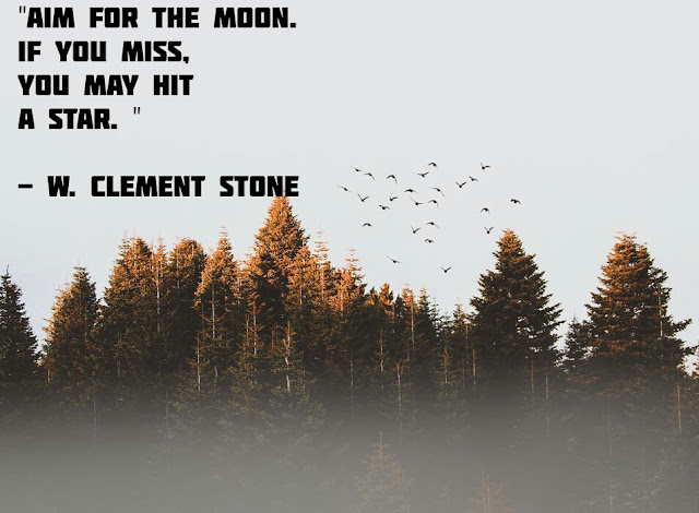 """""""AIM FOR THE MOON. IF YOU MISS, YOU MAY HIT A STAR.""""  - W. CLEMENT STONE"""