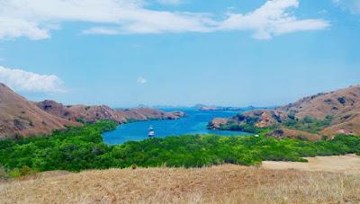Wisata Pulau Rinca yang tak pernah terlupakan