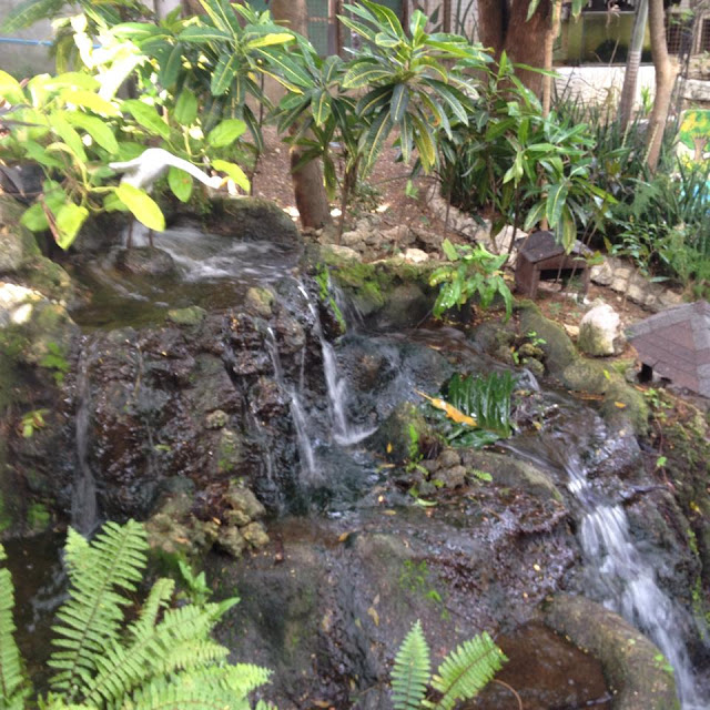 Zen fountain at Alta Cebu Resort