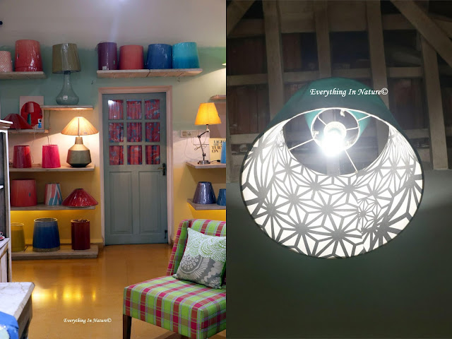 unique home decor lamp shades - everything in nature