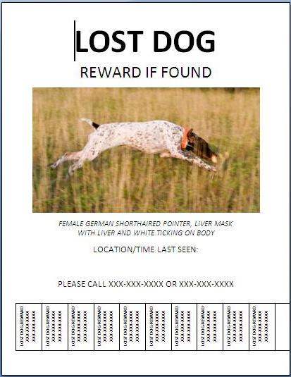 Missing Dog Poster Template. lost dog lost cat lost pet postcard ...